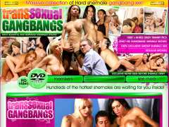 Transsexual Gangbangs